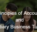 Group and Individual Principles of Accounts (POA) Tuition; ITE, POLY and Uni Finance, Statistics Tui