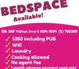AFFORDABLE BED SPACE @ Yishun Ave 6