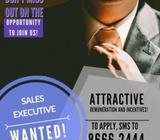 Education Advisors Wanted!! (Up to $2500/mth Basic + Commission!!)