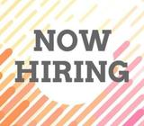 ARE YOU LOOKING FOR A TEMP JOB???  1/2/3/6 MONTHS  MASS HIRING