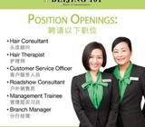 Hair Therapist / $$$ Basic + Commission $$$ /On the job training provided