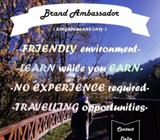 Learn & Earn !!! No experience required !!!