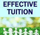 Secondary school tutors needed