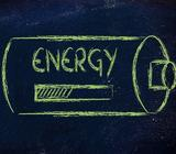 Project Delegates (Energy Sector) | Coaching Provided