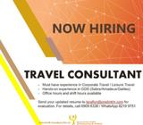 Travel Consultant (Central)