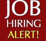 Urgent Temp Observer /South - Pasir Panjang / No working experience/ $9/hour