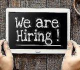 Recruitment Executive / Consultant with CEI