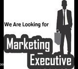 Marketing cum Admin Executive (Property)