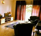 BIg Common Room in Orchard (No owner, no agent fees)