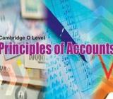 Principles of Accounts Tuition