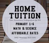 1-1 tuition or group tuition