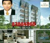 Brand new Condo @ Sandy eight (D15)