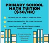 Primary School Math Tuition