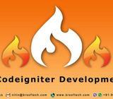 Dedicated Codelgniter Developer (BR-SOFTECH)