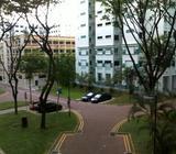 Hougang, Executive Apartment HDB/HUDC Sale