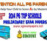2014 P6 PRELIM EXAM PAPERS
