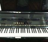 YAMAHA U1 for sale