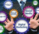 Professional Digital Marketing Services in your Office