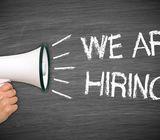 Hiring Sales Admin & Driver Position for Car Rental Company