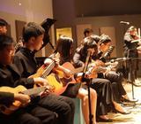 Violin lesson in Singapore