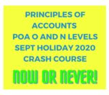 Principles of Accounts POA Sept 2020 O and N Levels Crash Course!