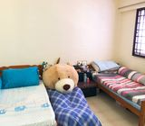 Common Room for Rent - Tampines