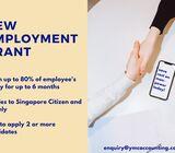 New Employment Grant